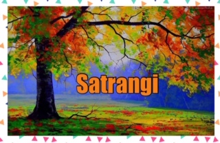 Archives – Satrangi
